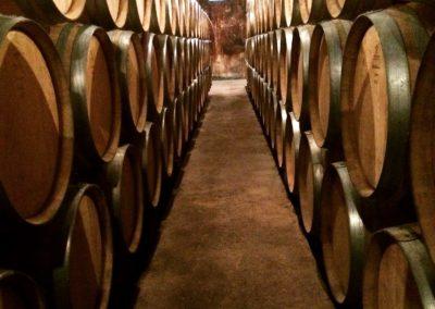 Dégustation de vins et tours dans le vignoble à Beaune en Bourgogne